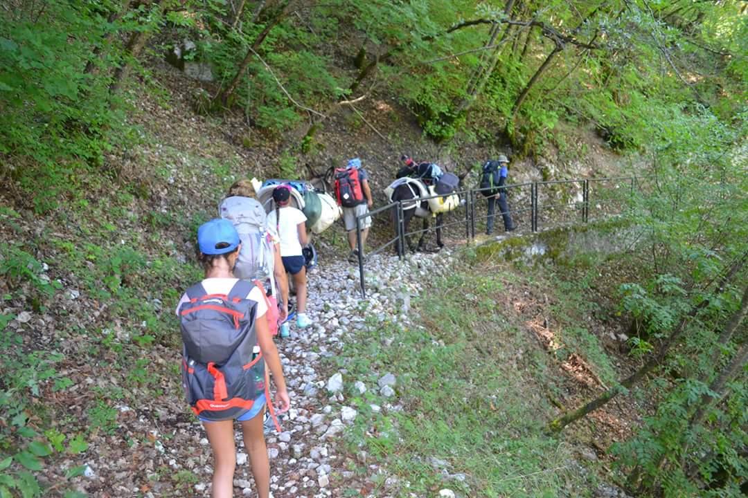 Sentiero Santa Rita asinelli (2)